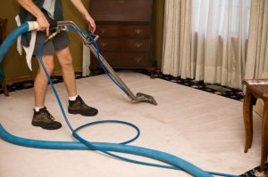 Carpet Cleaning Auckland Carpet Cleaners Rug Cleaning